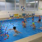 Předplavecká výuka